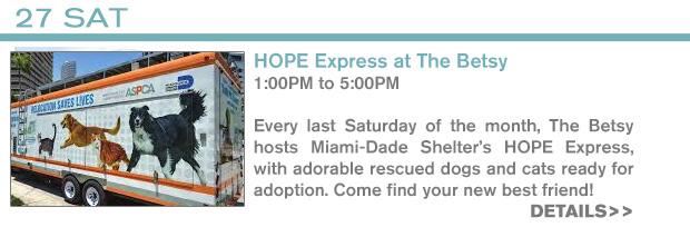 INFO - 2/27 HOPE Express