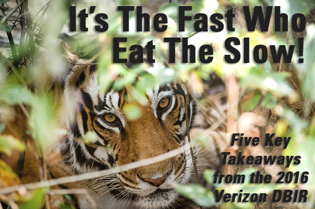 It's the Fast Who Eat the Slow!
