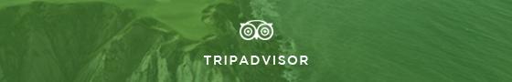 TripAdvisor link and image
